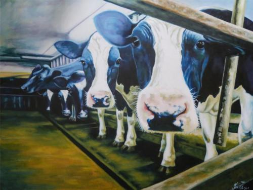 Essex Dairy Farm
