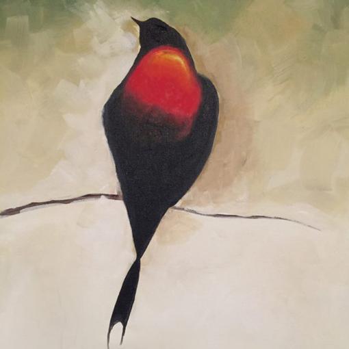 Lone Blackbird