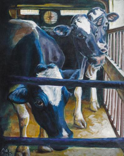 Vt. Dairy Life